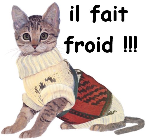 quel froid..!